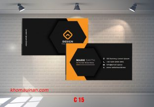Bộ sưu tập mẫu name card kinh doanh Mẫu C15