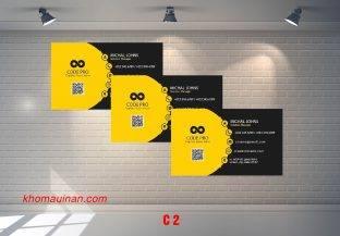 Bộ sưu tập mẫu name card kinh doanh Mẫu C2