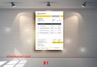 Mẫu sưu tập hóa đơn – B 1