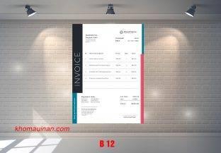 Mẫu sưu tập hóa đơn – B 12