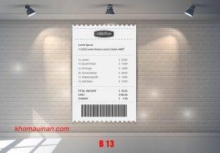 Mẫu sưu tập hóa đơn – B 13