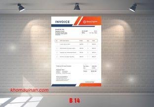 Mẫu sưu tập hóa đơn – B 14