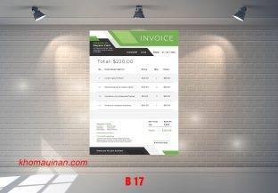 Mẫu sưu tập hóa đơn – B 17
