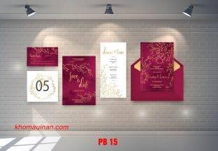 Bộ sưu tập mẫu phong bì – PB 15